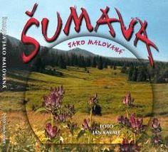 Celobarevná dárková kniha provázející nás Šumavou od jara do zimy.