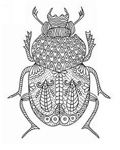 Free coloring page coloring-zentangle-beetle-by-bimdeedee