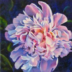 barbara fox artist | ... flower oil painting by Barbara Fox, painting by artist Barbara Fox