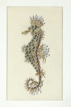 Esquisse et Croquis - Jean Schlumberger pour Tiffany and Co - Broche Hippocampe