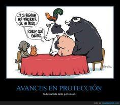 AVANCES EN PROTECCIÓN - Todavía falta tanto por hacer...