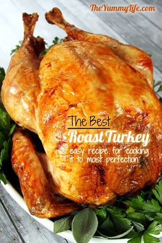 Roasted Herb-Turkey – Best Healthy Thanksgiving & Christmas Party Food Recipe - DIY Craft (3)