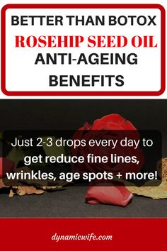 Did you know that rosehip seed oil can help erase fine lines and wrinkles? It helped my sister get rid of her dark acne scars too. Natural Beauty Tips, Health And Beauty Tips, Anti Aging Skin Care, Natural Skin Care, Rosehip Seed Oil, Anti Ride, Tips Belleza, Beauty Recipe, Homemade Beauty