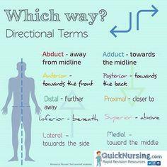 Phlebotomy, Nclex, Knowledge, Medical, Education, Nurse Stuff, Nurses, Study, Health
