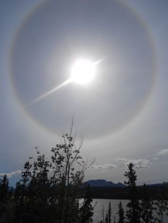 Sun Dog in the Yukon Beautiful Dogs, Beautiful World, Yukon Territory, Sun Dogs, Weather Network, Go Outside, Mother Nature, Places To Travel, Reflection
