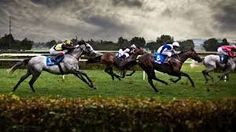 Horse racing has always been synonimous with betting. Horse racing is very popular in Europe since many years before and quickly favored over the world. People have discovered that betting on horse racing is an excellent way to make more money without...
