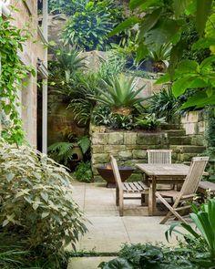 michael bates landscape / designer's own house garden, north sydney