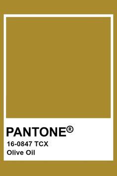 Pantone Colour Palettes, Pantone Color, Olives, Pantone Green, Seasonal Color Analysis, Dark Autumn, Colour Board, Color Stories, Season Colors