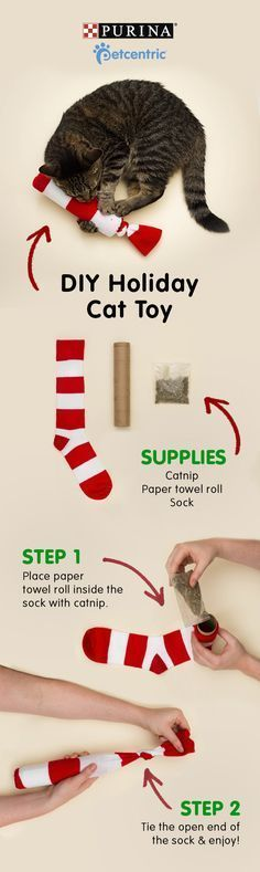 This year gift your kitty the purrrfect present: a DIY catnip sock toy. All you'll need is catnip, a sock and a paper towel roll. Place the roll in the sock, fill with catnip and tie the end. It's so easy and cute. now that's some cool cat stuff! Diy Cat Toys, Homemade Cat Toys, Toy Diy, Mr Chat, Diy Pour Chien, Diy Jouet Pour Chat, Kitten Toys, Ideal Toys, Sock Toys