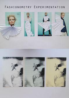 fashionometry