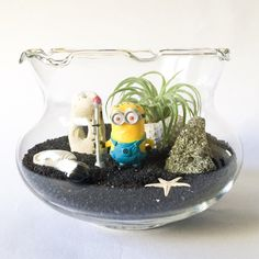 The Minion Moon Mission Terrarium Kit by TerrariumKits on Etsy Air Plant Terrarium, Terrarium Kits, Moon Missions, Air Plants, Minions, Snow Globes, Creative, Handmade Gifts, Flowers