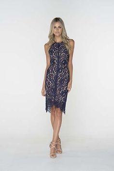 Navy Lace Midi Dress - Cocktail Dresses Online | Pilgrim Clothing Australia