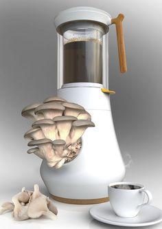 Esta cafetera cultiva exquisitos hongos en tu cocina