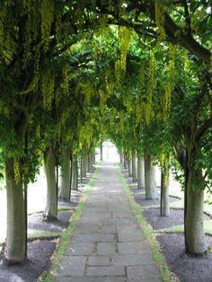 Haddington Gardens, Scotland