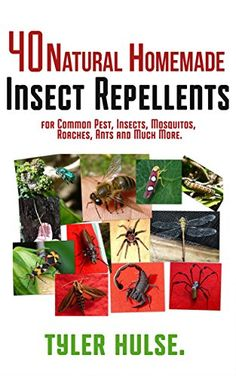 Homemade Repellents: 40 Natural Homemade Insect Repellents for Mosquitos, Ants…