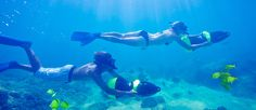 Cabo Snorkeling Tour | Snorkel & Kayak Excursion Tour | Cabo San Lucas