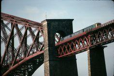 Scotland's Firth of Forth closeup