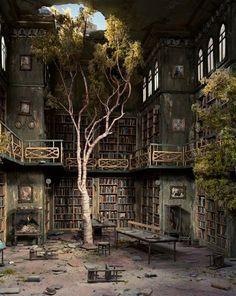 Abandon, room, tree, books, shelves