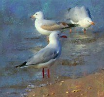 paintings of seagulls - Google Search