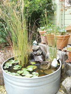 Galvanized Tub Water Garden!