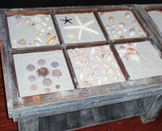 A seashell collection in a diy display coffee table. Old window frames were used to construct the top of the table.
