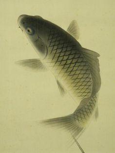 Japanese Painting, Chinese Painting, Chinese Art, Koi Art, Fish Art, Chinese Element, Fish Illustration, Tibetan Art, Traditional Paintings