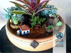 Linha platinum roça chique Plants, Chic, Line, Gifts, Celtic, Flora, Plant, Planting