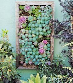 mooi om een tuinmuur mee op te vrolijken ontdekt