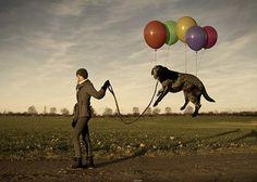 Reality+Manipulation | Re: Manipulation of reality.