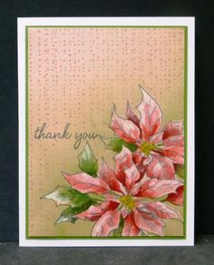Hero Arts BackgrounderPoinsettia Thank You by hobbydujour - Cards and Paper Crafts at Splitcoaststampers