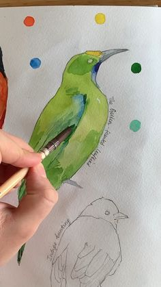 The Golden Fronted Leafbird By Polina Bright Using Polina Bright Synthetic Brush N 1 Cruelty Free Amp Vegan Watercolor Painting Techniques, Watercolour Tutorials, Painting Lessons, Painting & Drawing, Watercolor Illustration Tutorial, Art Painting Tools, Drawing Hair, Gouache Painting, Art Paintings