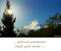... unlived #sentiments elude your #mind ...!