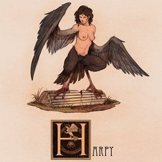 Name: Harpy Area of Origin: Rome, Greece The Harpies are Greek and Roman mythological creatures with the bodies of birds and the heads and torsos of women. They'd often steal food from their victims and would carry evil-doers to the Erinyes (also...