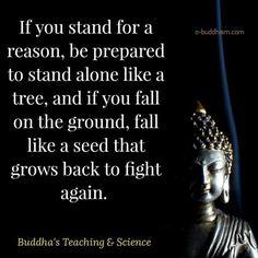 Stand alone like a tree .