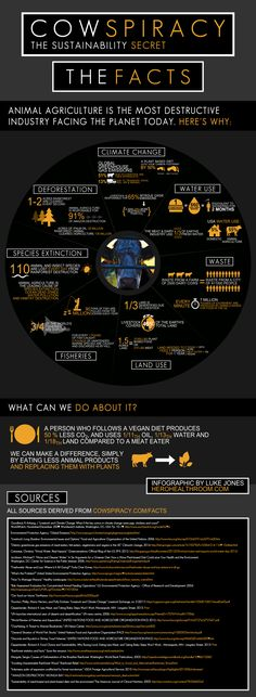 Watch Cowspiracy on netflixs   if you want to make a difference on the environment and save water and decrease pollution stop eating beef and dairy  Cowspiracy-Infographic.png