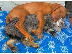 Friendship!!!!