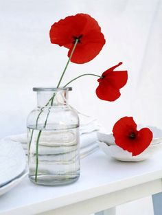 red poppies in glass jar