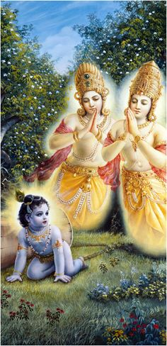 Ch:10. Although He was able to pass through the passage, the large wooden mortar stuck horizontally between the trees. Taking advantage of this, with great strength Lord Krishna began to pull the rope, which was tied to the mortar. As soon as He pulled, the two trees, with all their branches and limbs, fell down immediately with a great sound. Out of the broken, fallen trees came two great personalities, shining like blazing fire.