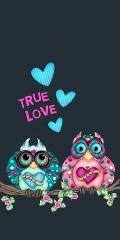 true love cute owls wallpaper