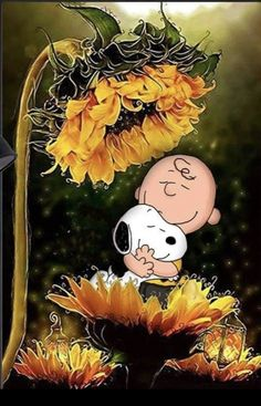 Iphone Wallpaper Fall, Cute Wallpaper Backgrounds, Cute Wallpapers, Snoopy Images, Snoopy Pictures, Peanuts Cartoon, Peanuts Snoopy, Good Morning Snoopy, Peanut Pictures