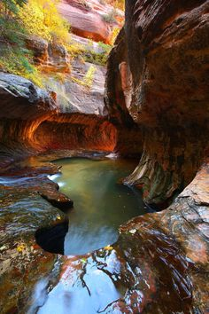 Love this place! Subway Falls Zion National Park, Utah Just a beautiful place! Needs to be on everyone's bucket list.