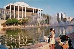 Visita Valencia para ver el show del Palau de la Musica!