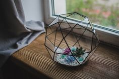 A personal favorite from my Etsy shop https://www.etsy.com/listing/235885175/small-terrarium-icosidodecahedron