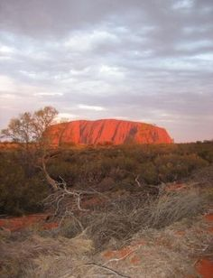 Uluru-Kata Tjuta National Park, #Australia http://www.tripadvisor.com.au/ShowForum-g256205-i2273-Uluru_Kata_Tjuta_National_Park_Red_Centre_Northern_Territory.html