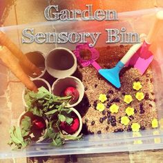 A garden sensory bin is a great way to start a discussion with your kids about where their food comes from!