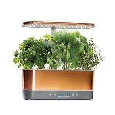 98 Best Kitchen Images Kitchen Dining Architects Bagel 400 x 300