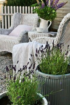 White wicker furniture and and plant containers. We'd love to be relaxing with a cocktail here!