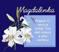 Magdalénka Prajem Ti, nech je každý Tvoj deň krásny a plný úsmevu Place Cards, Place Card Holders, Blog, Blogging