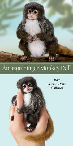Angelica Holm Poseable Amazon Finger Monkey Dolls