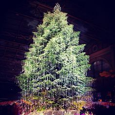 Wishing all of you a wonderful holiday with this breathtaking #Swarovski #Christmas tree in Zurich